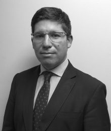 Renzo Munita Marambio