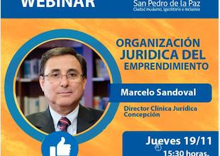 Clínica Jurídica participa en Webinar con emprendedores de San Pedro de la Paz